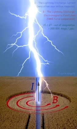 Crop circle - a simulation of Lightning Electromagnetic Fields